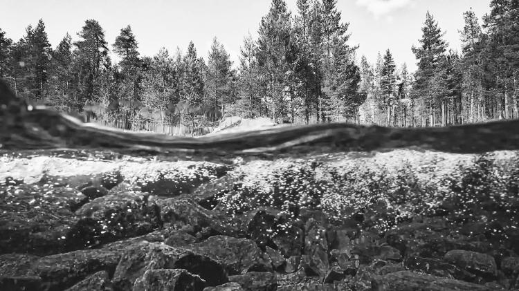 Lapland_Stream